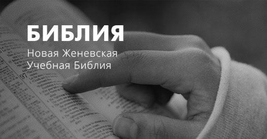 толкование библии скачать на андроид